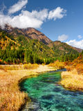 Beautiful river with azure crystal clear water among fall fields Royalty Free Stock Photography