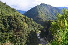 Beautiful river in Baños, Ecuador. River crossing the jungle of the town of Baños, Ecuador royalty free stock photos
