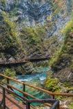 Beautiful river. Stock Photo