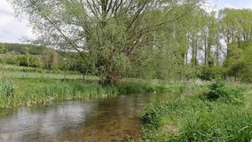 The beautiful River Chess in Chorleywood stock video footage