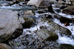 Beautiful River clear water flowing through stones and rocks Stock Images