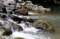 Beautiful River clear water flowing through stones and rocks Stock Image