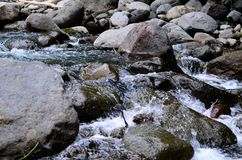 Beautiful River clear water flowing through stones and rocks Stock Photo