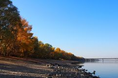 Beautiful River Danube. With autumn trees royalty free stock photo