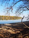 Beautiful River Danube. With autumn trees royalty free stock photos