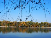 Beautiful River Danube. With autumn trees royalty free stock images
