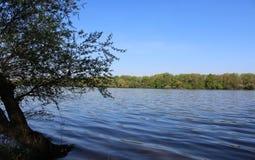 Beautiful River Danube. River Danube near city of Csepel, Hungary royalty free stock images