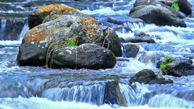 Beautiful river detail stock video