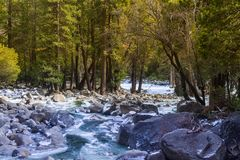 River in Yosemite National Park. Beautiful river that flows from a nearby waterfall, in Yosemite National Park Stock Image
