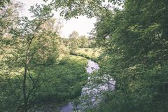 beautiful river in forest - vintage film effect