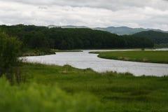 Beautiful river among green fields. Beautiful river among green fields in summer royalty free stock photos