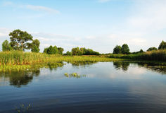 Beautiful river landscape. Beautiful green and blue day river landscape Stock Images