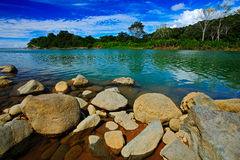 Beautiful river landscape from Costa Rica. River Rio Baru in the tropic forest. Stones in the river. Trees above the river. Summer Stock Photos