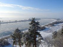 River Nemunas and snowy trees in winter, Lithuania Royalty Free Stock Images