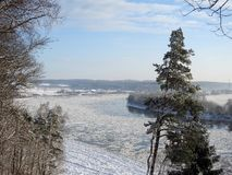 River Nemunas and snowy trees in winter, Lithuania Royalty Free Stock Image