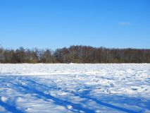 River Nemunas and plants in winter , Lithuania Royalty Free Stock Images