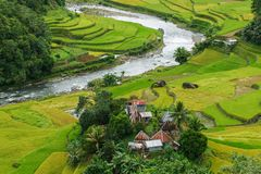 Beautiful river and rice field in Banaue. Philippines Stock Photo