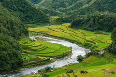 Beautiful river and rice field in Banaue. Philippines Royalty Free Stock Photography