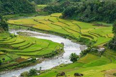 Beautiful river and rice field in Banaue. Philippines Royalty Free Stock Photos