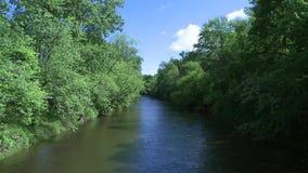 Beautiful river running through the greenery (1 of 7) stock video