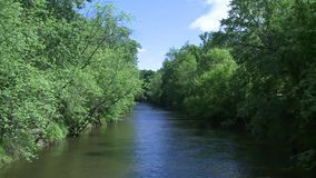 Beautiful river running through the greenery (4 of 7) stock footage