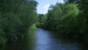 Beautiful river running through the greenery (5 of 7) stock video footage