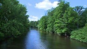 Beautiful river running through the greenery (6 of 7) stock video