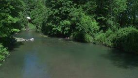 Beautiful river running through the greenery (2 of 7) stock video