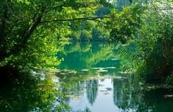 Beautiful river scene, Croatia Stock Photography