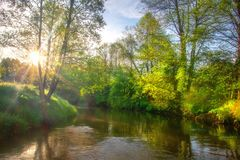 Beautiful river scene at sunrise. Green summer landscape on riverside. Scenery river. Bright sun on riverbank stock photos