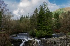River Conwy in Betws Y Coed. Beautiful river scene with trees on a small island and a waterfall in the foreground at the village of Betws Y Coed in North Wales royalty free stock image