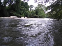 A beautiful river in Sri Lanka. A very beautiful river near the town in Embilipitiya, Sri Lanka stock images