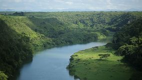 Beautiful river in tropical forest. Top view stock video
