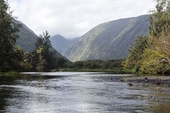 Beautiful river - waipio valley, hawaii Stock Photography