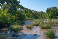 Beautiful river with watering place in savannah Royalty Free Stock Photography