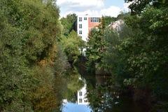 Beautiful riverside. Trees river reflexion Royalty Free Stock Image