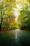 Beautiful road Royalty Free Stock Photo