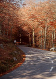 Beautiful road. In Montseny mountain in autumm, Spain Royalty Free Stock Photography