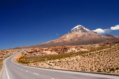 Beautiful Road. Through Nevado Sajama National Park Bolivia royalty free stock photos