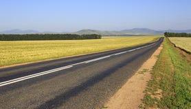 Beautiful road among farm fields Royalty Free Stock Photos