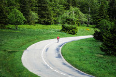Beautiful road in green fields, natural landscape Royalty Free Stock Photos