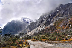 Beautiful road in the himalaya Royalty Free Stock Photos