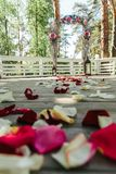 Beautiful road with rose petal for a wedding. Ceremony Stock Images