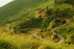 Beautiful Road. These is beautiful road to Doi Pa Tang in Chiangrai Royalty Free Stock Image