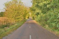Beautiful road Stock Images