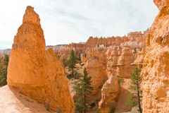 Beautiful rock formation in Bryce Canyon. Stock Images
