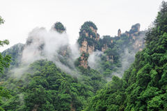 Beautiful Rock Mountains with Green Trees Surrounded by White Mist Clouds. Green Mountain Landscape Stock Photography