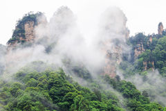 Beautiful Rock Mountains with Green Trees Surrounded by White Mist Clouds. Green Mountain Landscape Stock Image