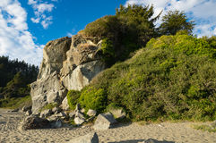 Beautiful rock with vegetation Royalty Free Stock Images