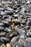 Beautiful Rocks on the Beach. Beautiful Oval Shape Rocks on the Beach Royalty Free Stock Photo